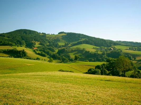 Liebliche Landschaft rund um die Steinmühle