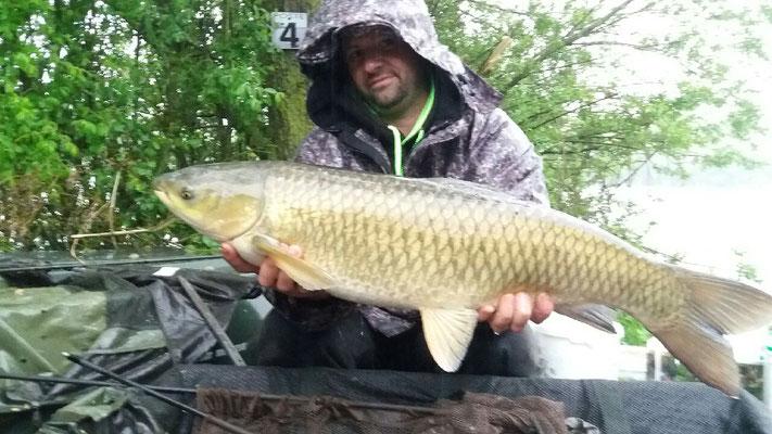 Carpe amour 10,5 kg, poste 4 le 12 mai, étang Acrocarpe - 80120 Rue- Flandre