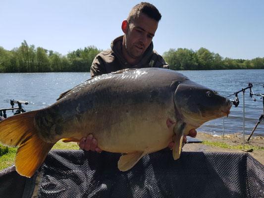 Carpe Miroir 15kg, 10 mai Poste 4, étang Acrocarpe - 80120 Rue- Flandre
