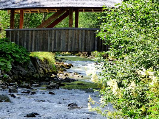 Ferienhaus in Baad im Kleinwalsertal, Mittelberg, Ferienwohnung für 2 bis 6 Personen, Heidi im Tal, Kleinwalsertal Sommer