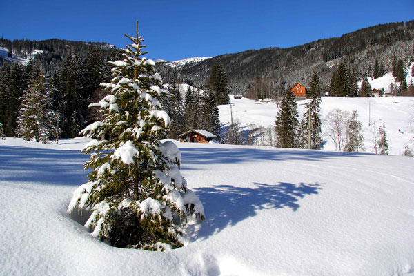 Ferienhaus in Baad im Kleinwalsertal, Mittelberg, Ferienwohnung für 2 bis 6 Personen, Heidi im Tal, Kleinwalsertal Winter