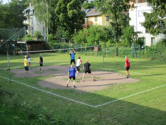 Laufgruppe beim Volleyball im Juni 2016