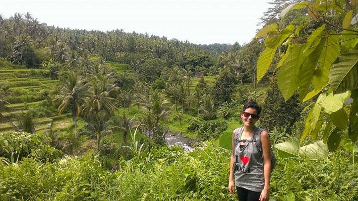 Bali, 2013