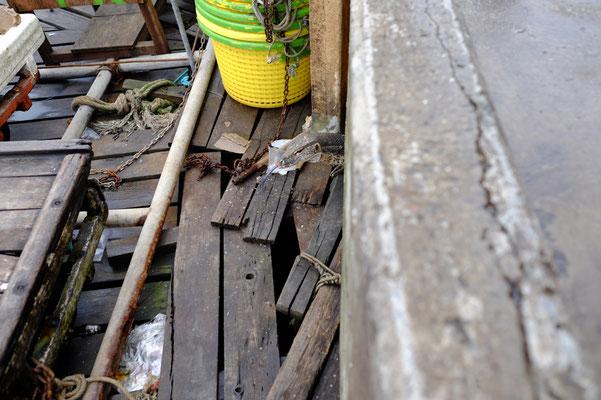 Durch den vielen Müll der sich am Ufer ansammelt, fühlen sich die Warane hier pudelwohl