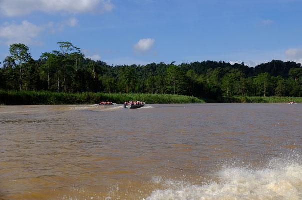Kinabatang River