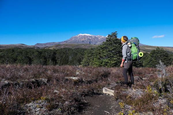 Mit Blick auf Mt. Ngaurohoe