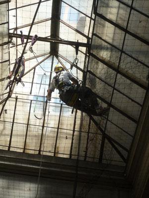 Verrière  toit montpellier accro gecko