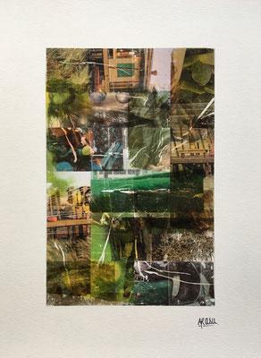 Lichen, collage sur papier A3, 300g-2018-90€.  (2)