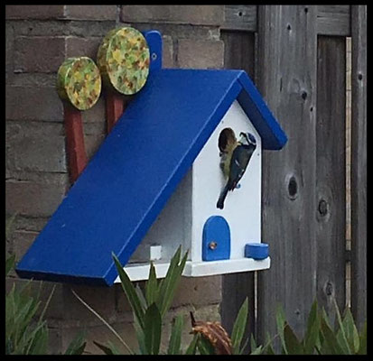Houten Nestkastje voor Pindakaas pot, Nestkastje, Huisje bezet, Vogelhuisje bouwen, vogelhuisje pindakaas pot