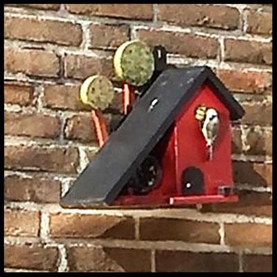 Houten Nestkastje voor Pindakaas pot, Nestkastje, Huisje bezet, Vogelhuisje bouwen, vogelhuisje pindakaas pot_3