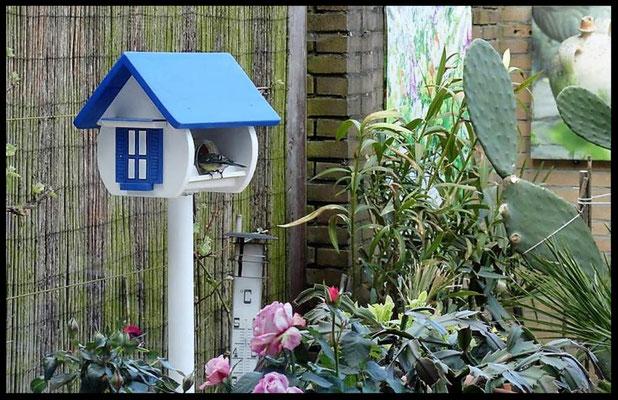 vogel voederhuisje in Griekse stijl, blauw-wit