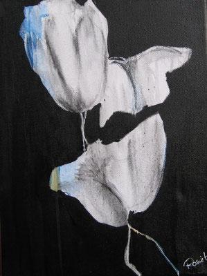 "Nr. 521 / ""Weißer Mohn 1"" / 30 cm x 40 cm / Acryl auf Leinwand"