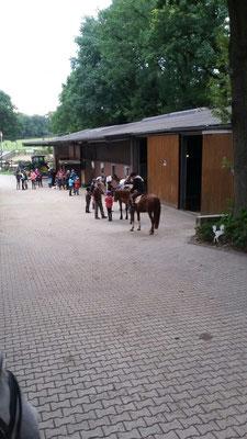 Pferde und Reiter versammeln sich