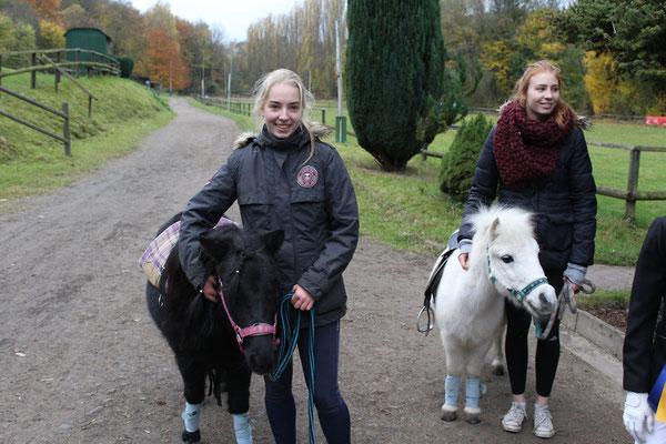 Ponyreiten auf den Shetland Ponys