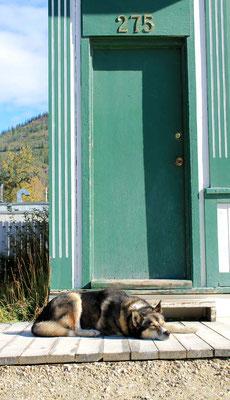 Dawson City impression