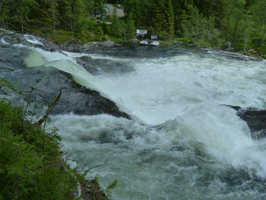 Wildwasser Nähe Voss