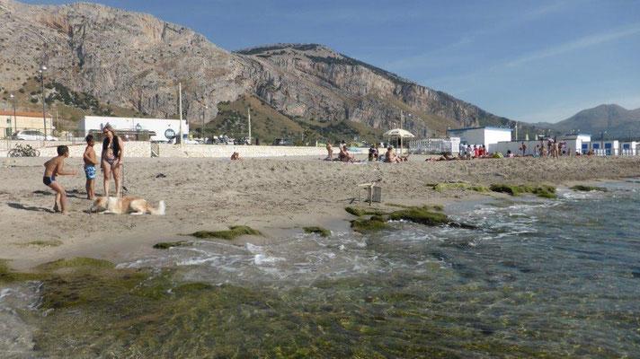 Strand vor CP La Playa