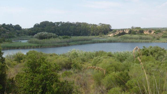Biotop Nähe Mazara