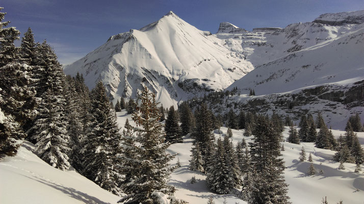 Alp Tschingelfeld im Winter