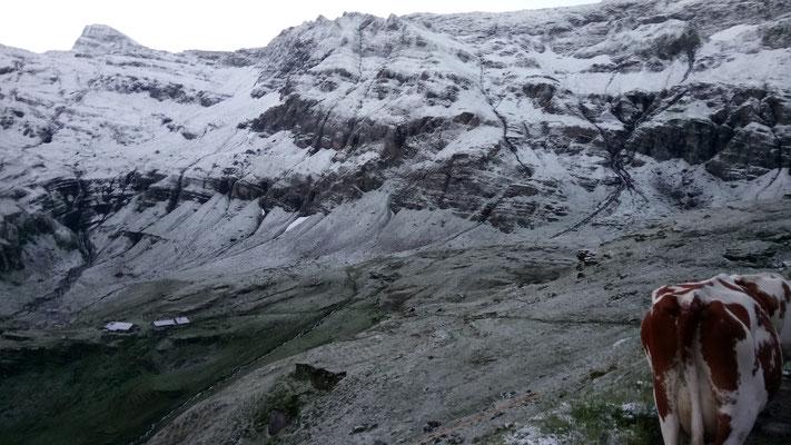Schnee im August von Schnappsegg