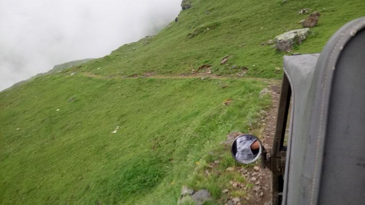 Retourfahrt mit Haflinger von Kuhberg in den Oberberg