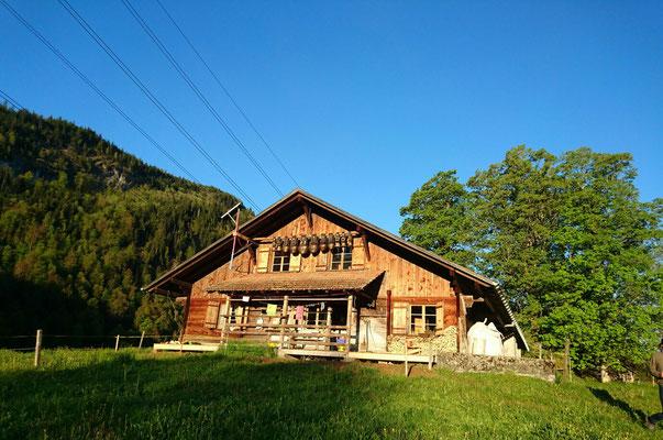 Hütte Schweibenalp