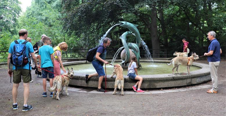 Der Brunnen war sehr interessant und musste ausgiebig erkundet werden