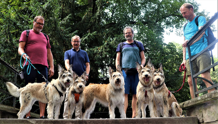 Bibi, Bea, Mona, Betty und Holly mit ihren stolzen Besitzern