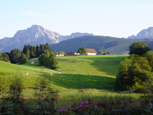 Blick von Anger-Höglwörth Richtung Fürmannalm und Staufen