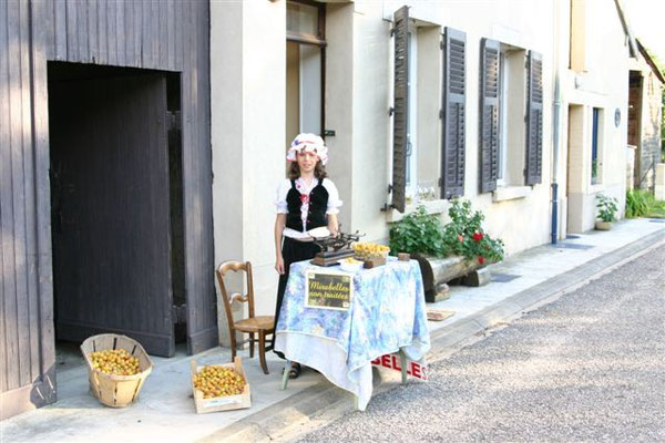 Les mirabelles de Lorraine du gite de l'Alambic
