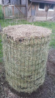 Kartoffelturm 2018 und zu allerletzt mit Mulch bedecken.