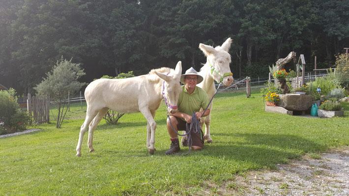 Es heißt, wer einmal mit einem Esel gewandert ist, will es immer wieder. Was zählt, ist die Nähe zum Tier und zur Landschaft, die man – gewollt oder ungewollt – recht entschleunigt durchquert.