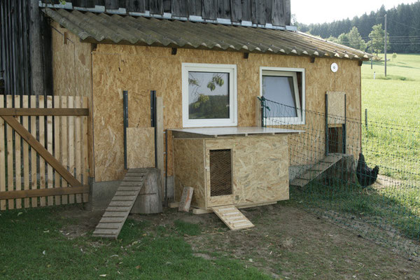 Unser altes Glashaus in Funktion als Hühnerstall und der kleine Stahl davor für Gluckhennen.
