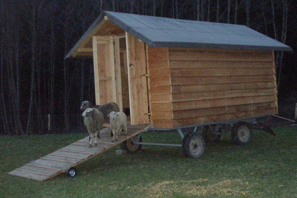 Unser Mobiler Schafstall