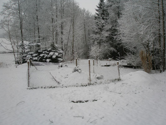 Hügelbeet im Winter