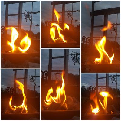 Agnihotra ist die grundlegende Homa-Feuertechnik, die auf dem Biorhythmus von Sonnenauf- und Sonnenuntergang beruht und bereits in den jahrtausendealten Veden zu finden ist. Auch in der Bibel wird es erwähnt (Daniel 8.26)