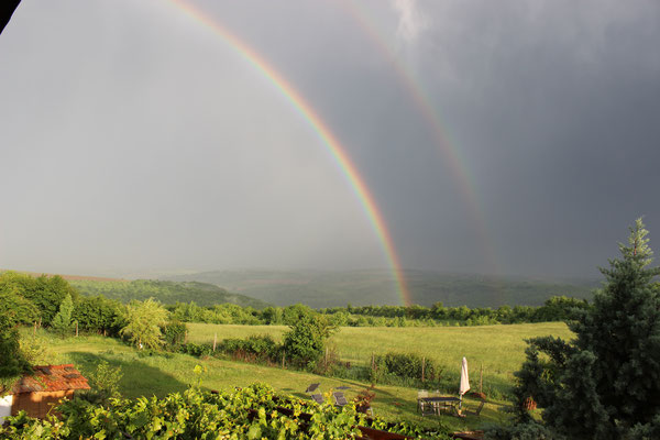 Blick in die Natur mit Regenbogen