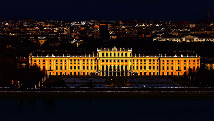 Vienna Vista I