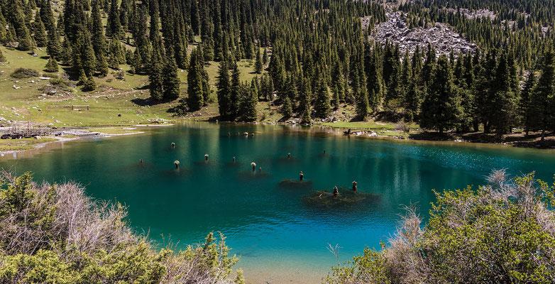 Kel-Kogur Lake - Grigorevka-Canyon # 11