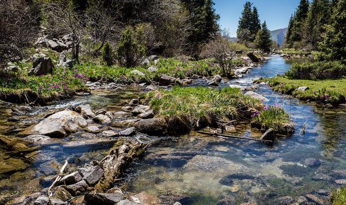 Tscholpon-Ata - Grigorevka-Canyon # 15