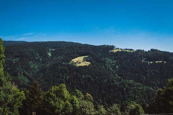 Freistehendes Haus auf dem Berg mitten im österreichischen Wald