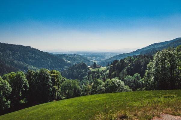 Berglandschaft Österreichs