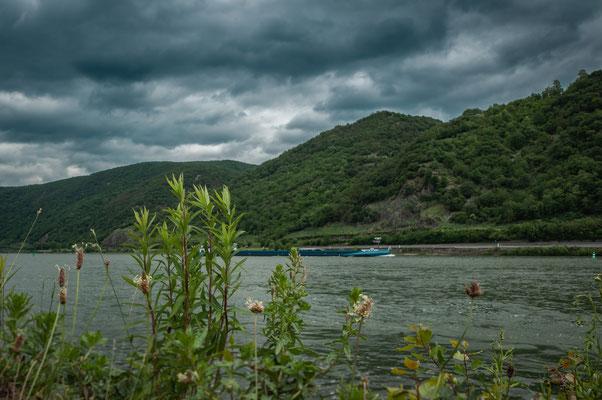 Schiffsfahrt am Rhein