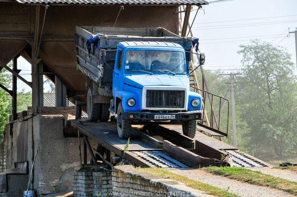 Abfahren eines beladenen LKWs mit Getreide