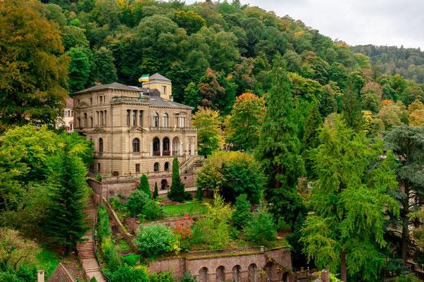 Villa am Hang mit einem wunderschönen Blick aus dem Fenster auf die Altstadt Heidelberg
