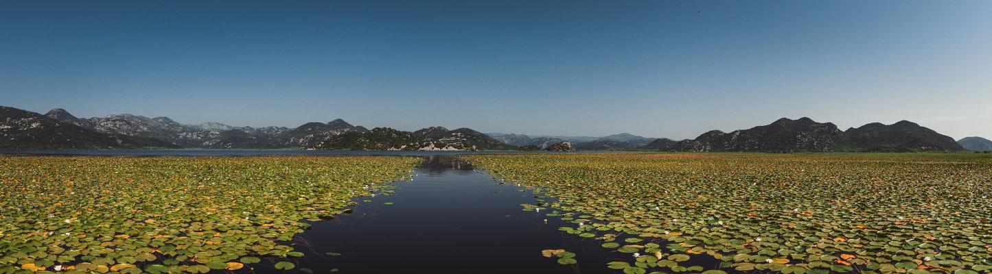 Panorama Blick auf den Skadarsee mit einer vom Menschen erschaffenen Wasserstraße durch die Seerosen