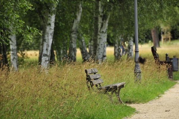 Kur-Park von Bad Homburg