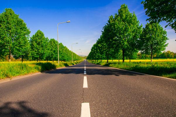 Einsame asphaltierte Auto-Strasse nach Kalbach Frankfurt am Main