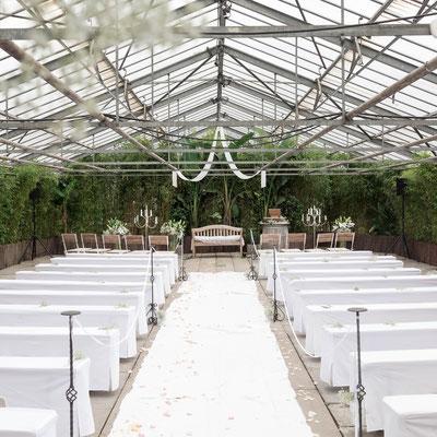 Fotograf und Videograf für moderne Hochzeit in Langen
