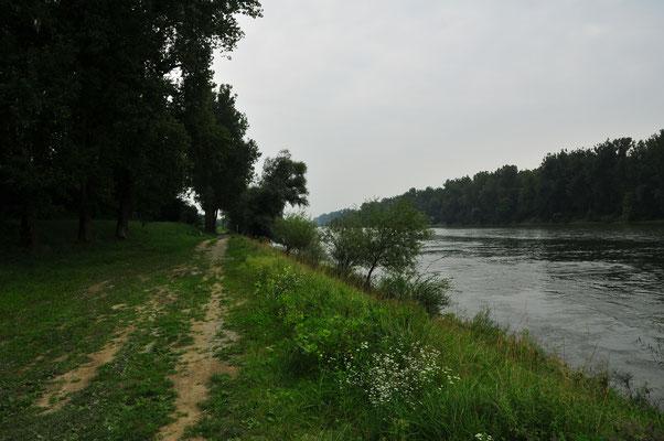 Donau in Bayern